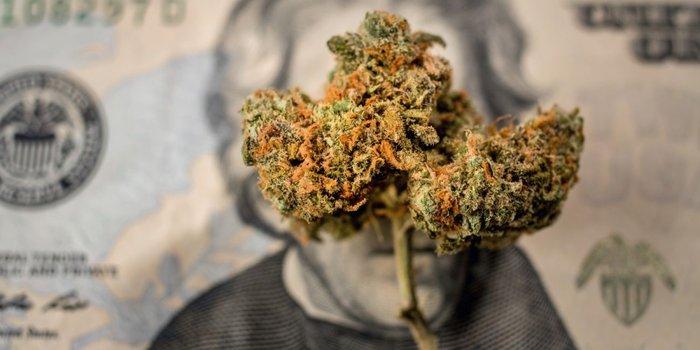 Ways to Grow Your Cannabis Brand through Digital Marketing